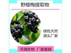 野樱莓提取物 野樱莓粉厂家直销